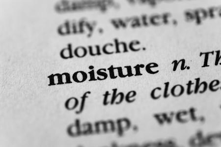 moisture: Moisture