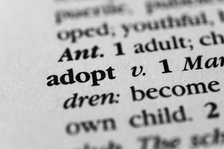 assume: Adopt