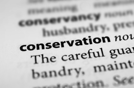 guardianship: Conservation