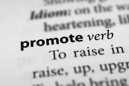 publicize: Promote