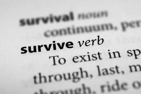 survive: Survive Stock Photo