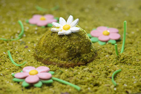 greem: Pistachio desert decorated like green grass with daisy flowers