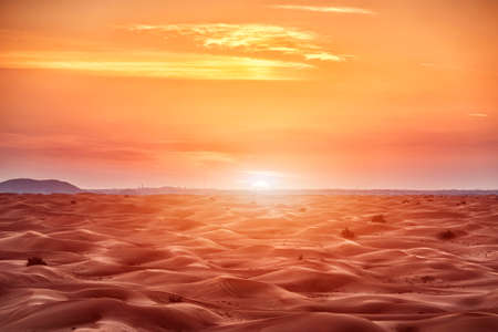 Bunte rote Sonnenuntergang über der Wüste Standard-Bild
