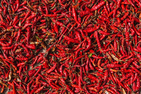 dry red chili pepper