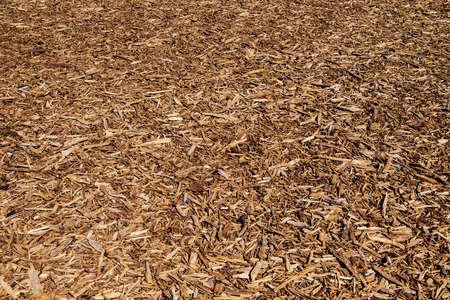 Gros plan d'une texture en bois de liège en tant que composition de fond.