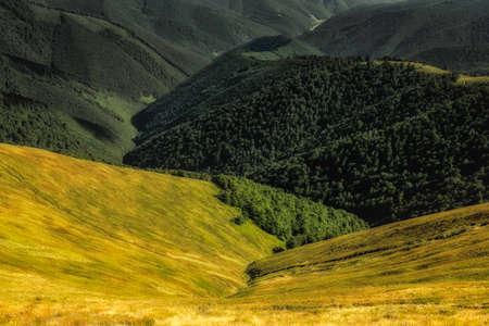 Paysage d'automne. Vue d'automne des montagnes vertes des Carpates, collines vertes au coucher du soleil.