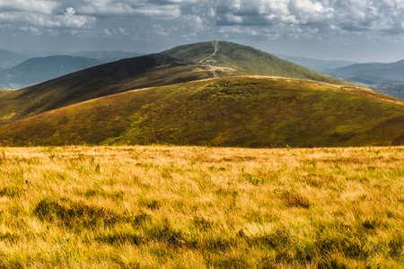 Vue d'été des Carpates et des Vallées, sous le ciel bleu avec des nuages.