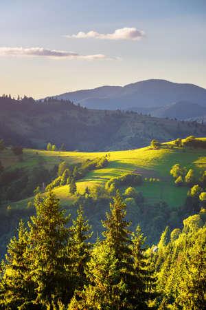 Paysage d'automne. Vue d'automne des montagnes vertes des Carpates.