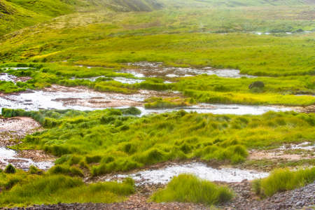 Wonderful icelandic nature landscape. High mountains, geothermal mountain river and green grassland. Sheeps taking rest in steam background.