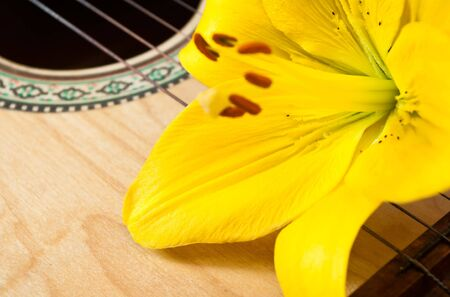 The yellow lily lays on a deck of a guitar Stock Photo