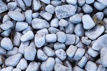 There are leaves among the white pebbles