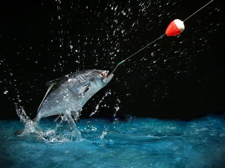 Catching a big fish with a fishing pole at night Stock Photo - 634580