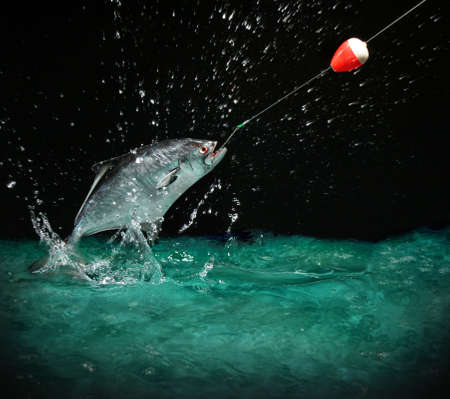 Catching a big fish with a fishing pole at night photo