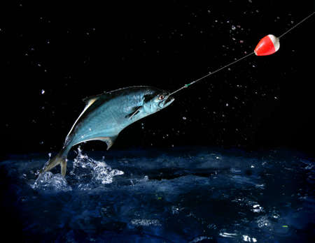 Catching a big fish with a fishing pole at night Stock Photo - 644298