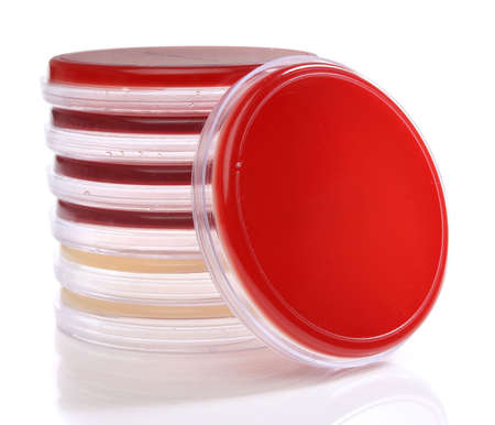petri: Several petri dishes for medical research