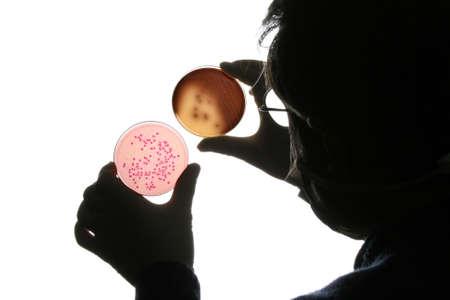 Doctor analyzing petri dish Stock Photo - 1827821