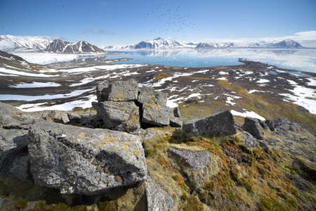 alpine tundra: Arctic landscape - Spitsbergen, Svalbard