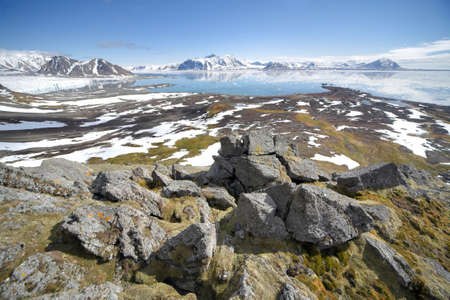 Summer in the Arctic ! Imagens