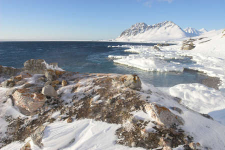 Arctic beach in the winter - landscape photo