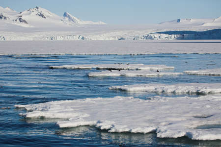Typical Antarctic landscape - mountains, sea, ice, glaciers photo