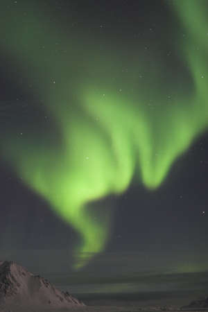 Northern Lights - vertical landscape photo