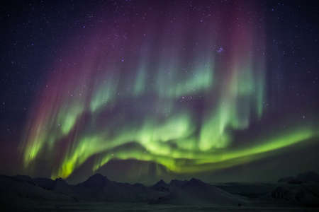 green light: Arctic magical landscape - Northern Lights