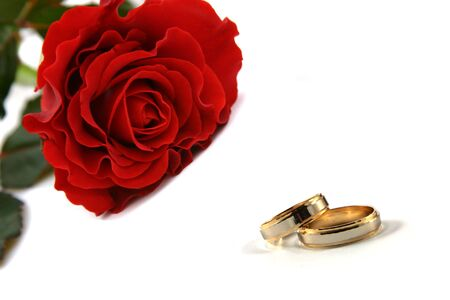 wedding rings and rose photo