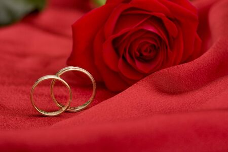wedding rings and rose