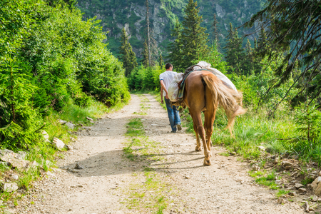 A man drives a horse along a mountain road Stock Photo