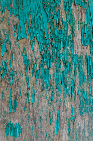 texture peeling green paint on a wooden board on the whole frame Stock Photo