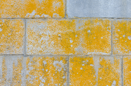 the texture of a gray stone wall with a yellow paint