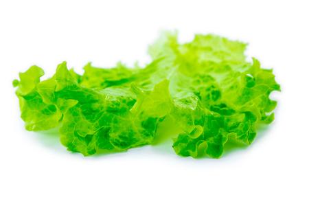Fresh Lettuce  one leaf isolated on white background  close-up Reklamní fotografie