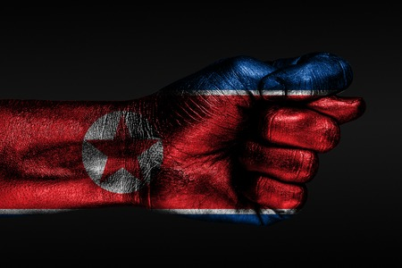 A hand with a painted North Korea flag shows a fig, a sign of aggression, disagreement, a dispute on a dark background. Horizontal frame