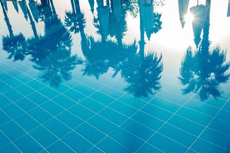 Charm el-Cheikh, Egypte, 25/02/2019. de nombreux hauts palmiers se reflètent dans l'eau bleue. image à l'envers. Cadre horizontal