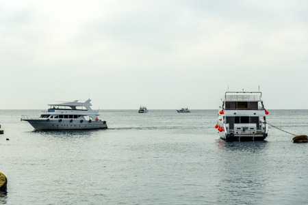 several white yachts are in the blue sea. Horizontal frame