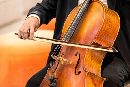 string musical instrument, viola - large violin, close up.