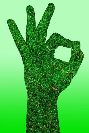 texture of a hand made of grass, shows a OK sign. Reklamní fotografie