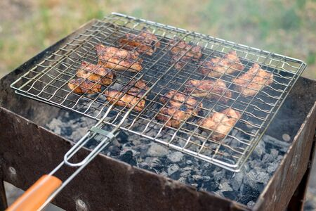 lunch in the open air; meat is grilled on a barbecue.