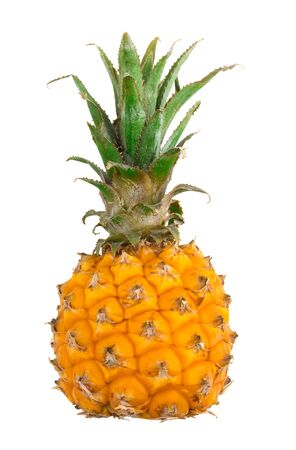 Baby pineapple on a white background. Fresh small pineapple close-up on a white background. Pineapple Isolated on a White Background.