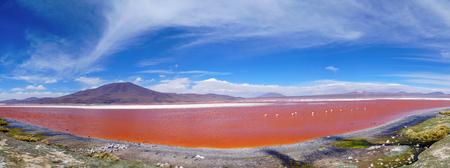 ボリビアのフラミンゴとレッドラグーン(赤い湖) 写真素材