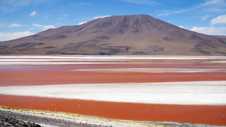 Red Lagoon, Bolivia 写真素材 - 102435132