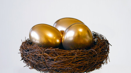 Nest With Golden Eggs Stockfoto