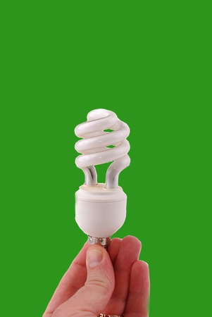 Bulb of spiral type on a white background  Stock Photo - 8809355