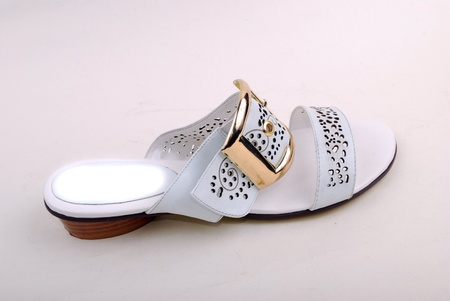 women shoe isolated on a white background Stock Photo - 9210378