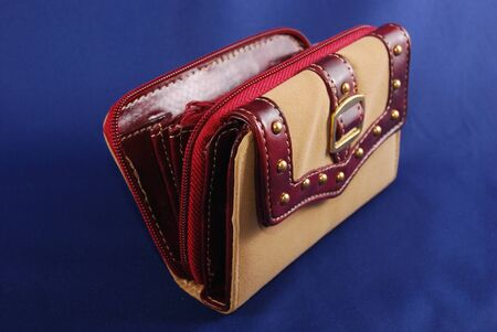 inserts: Purse from a light skin with red inserts