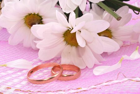 Wedding rings and flowers composition. White petals. photo