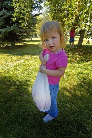 apple sack: Little girl picking apples and holding sack of apples Stock Photo