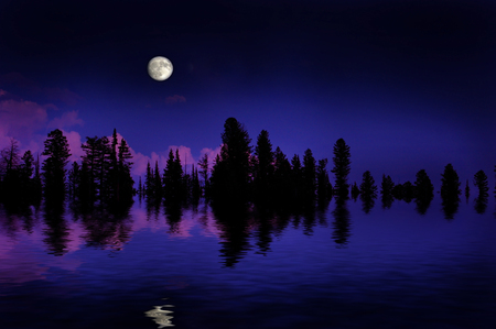 shadow: Moonrise over pine trees in the mountains with reflection in lake Stock Photo