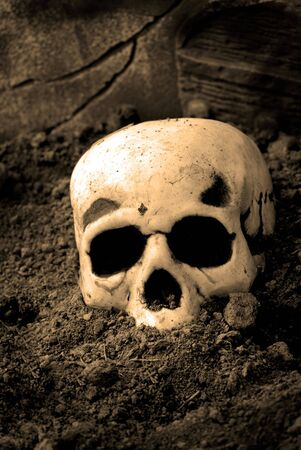 eye socket: Human skull lying on top of dirt Stock Photo