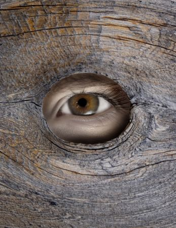 knothole: Persons eye looking through a hole in wood